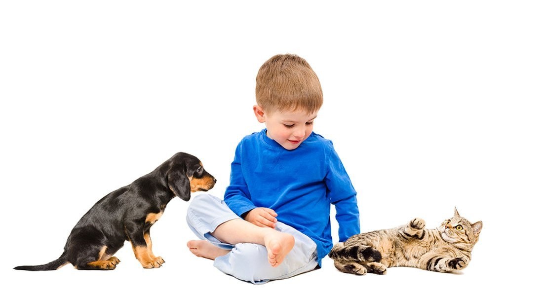 Steps to Properly Socialize Puppies and Kittens